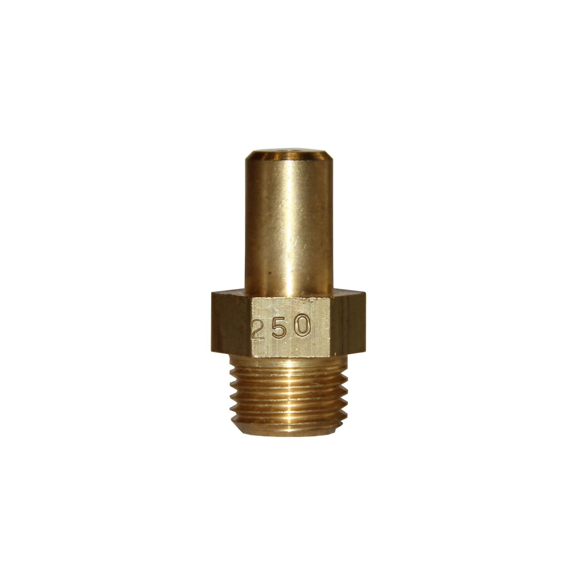 INJECTEUR PRINCIPAL GAZ NATURELLE: 250 × 22